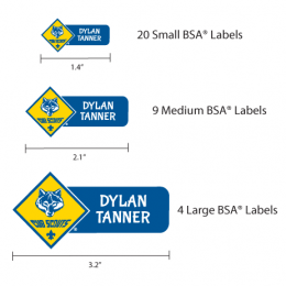 Boys-Scouts-Labels-Mix-Pack2